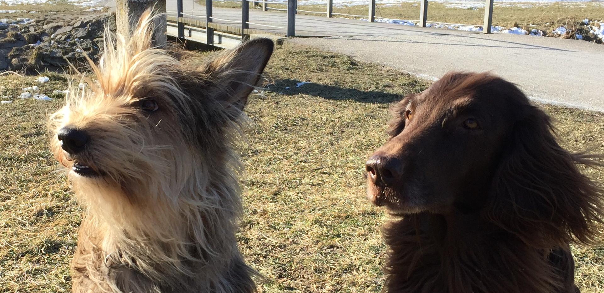 Smilla und ihre Freundin
