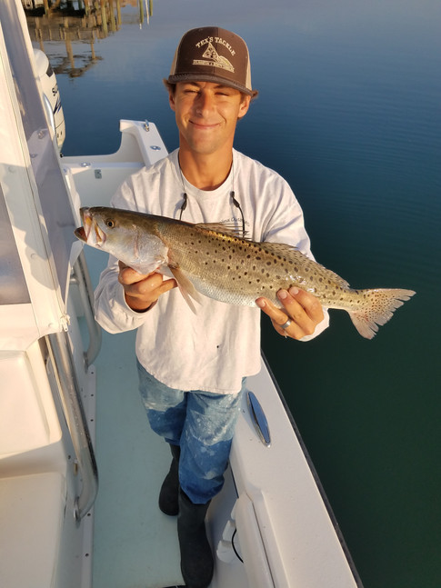 WB Speckled Trout