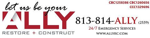 Ally Logo.jpg