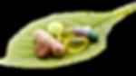 Vitamins-leaf.png