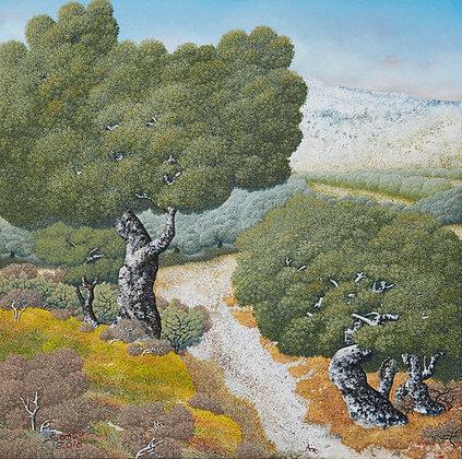 עצי זית, ציור שמן