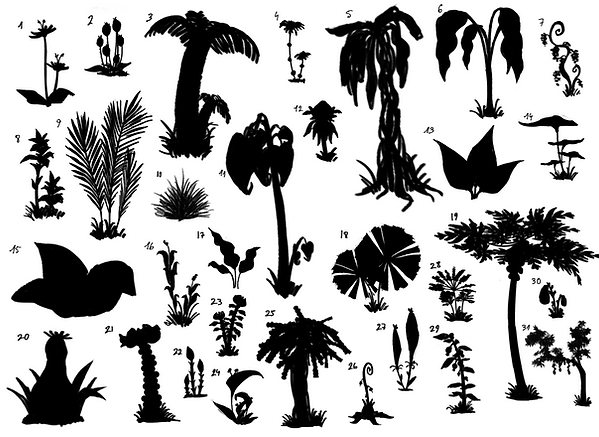 plants_sketches01_silhouets.png