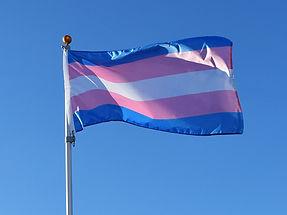 transgender flag.jpg