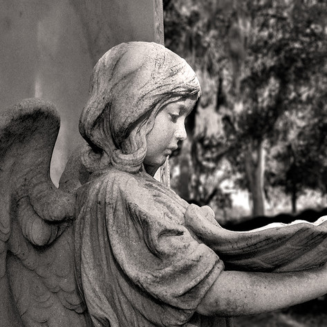 Child Angel with Shell