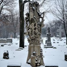 Philip Lueft Tree Stump
