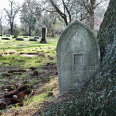 Headstone and Tree