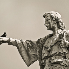 Gentleman with Bird