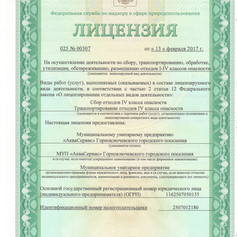 Лицензия ТБО