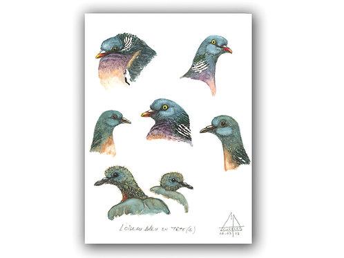 L'oiseau bleu en tête(s)