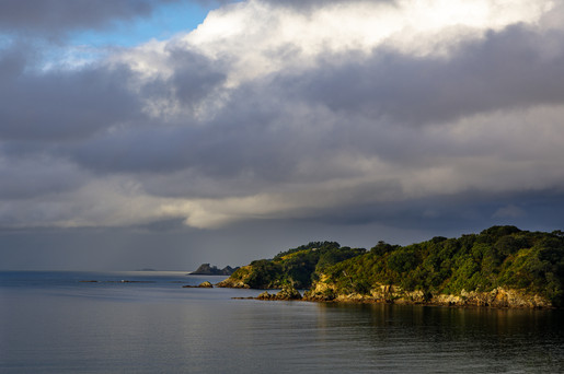 Onerpa Bay Waiheke Island by Bridget Sloane