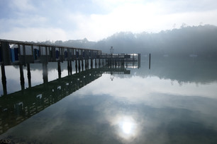 Misty morning at Hobsonville wharf by Pat Norton