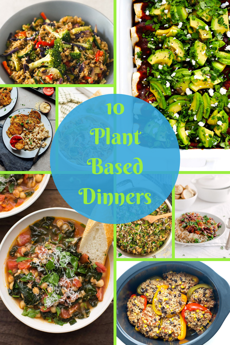 10 plant based dinner recipes