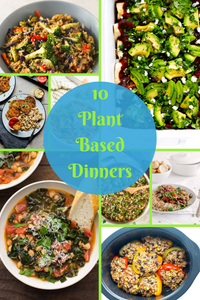 10 plant based dinner recipes