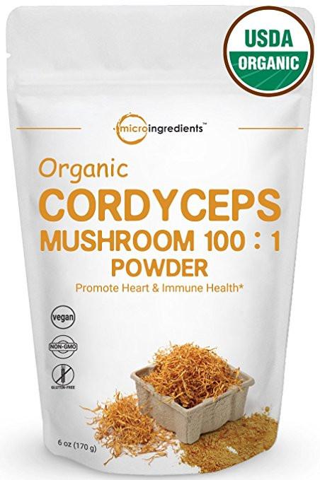 cordyceps mushroom powder organic