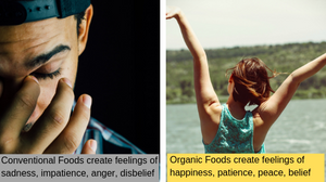 organic versus conventional foods and moods