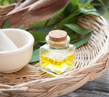 3 reasons why you need eucalyptus oil right now