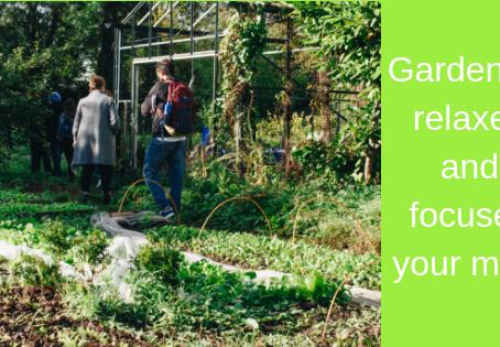 Expert Advice for Growing a Vegetable Garden