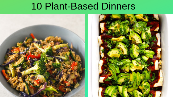 10 plant-based dinners to try with pictures of brown rice stir-fry and vegetarian enchiladas