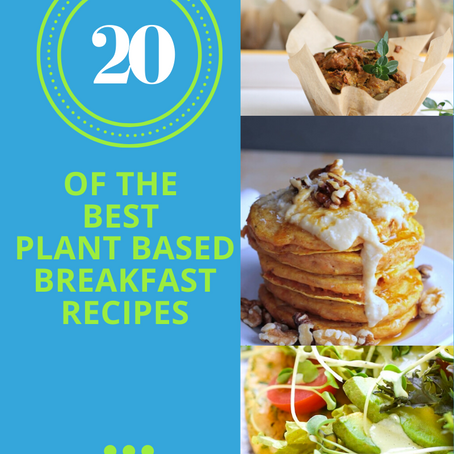20 Of The Best Plant Based Breakfast Recipes