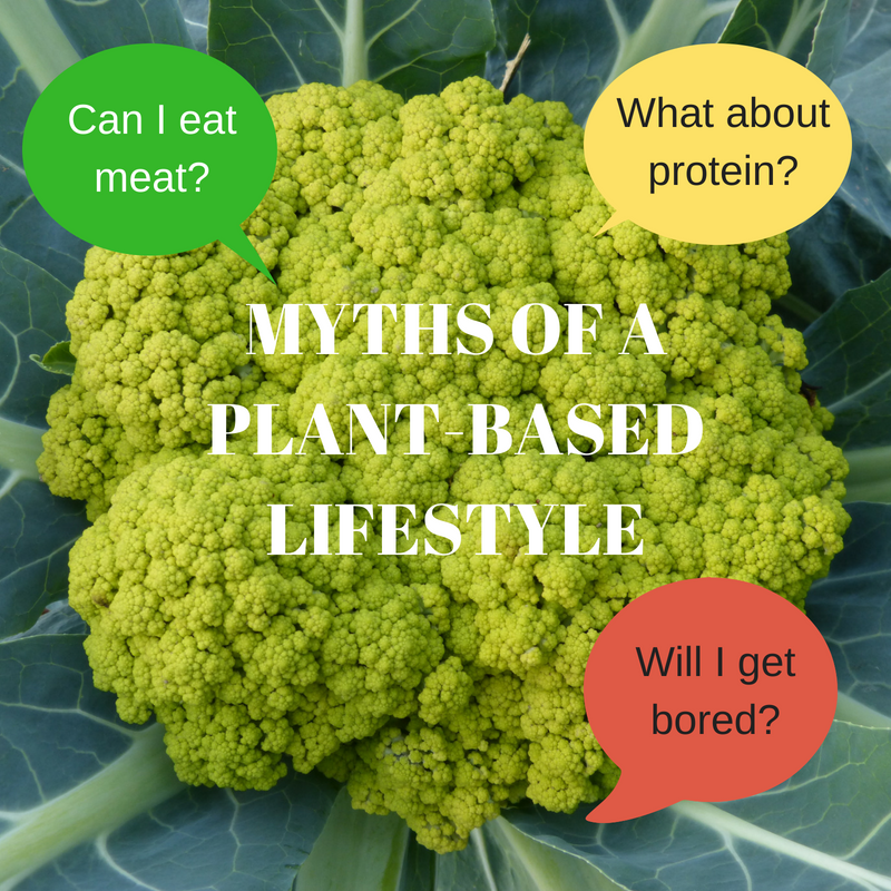 myths of a plant-based lifestyle questions