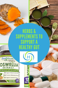 herbs and supplements that support a healthy gut