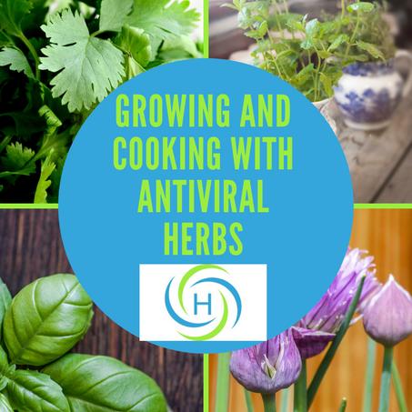 Expert Advice On Easy AntiViral Herbs To Grow
