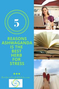 5 reasons ashwaganda is the best herb for stress