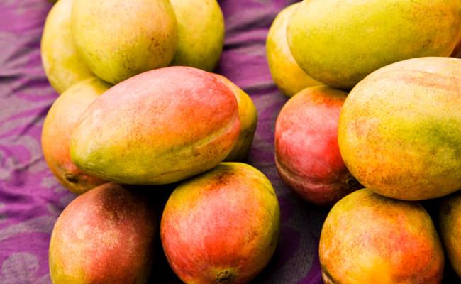 Mangoe