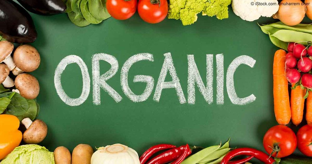 organic foods help heal the gut