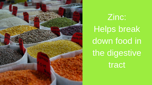 zinc is found in beans