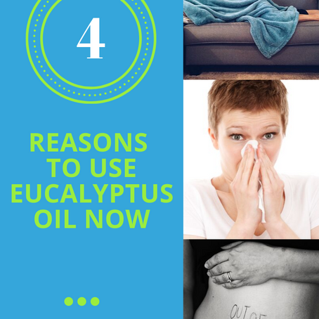 4 Reasons Why You Need Eucalyptus Oil Right Now