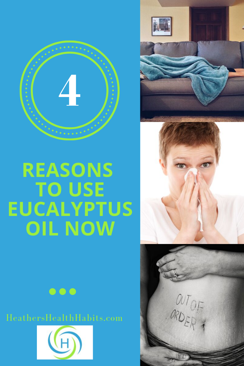 4 reasons to use eucalyptus oil right now