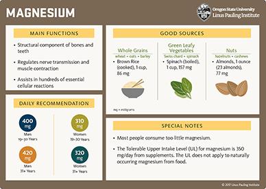magnesium overview
