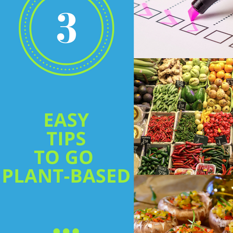 3 Easy Tips That Will Make You Eat Plant-Based