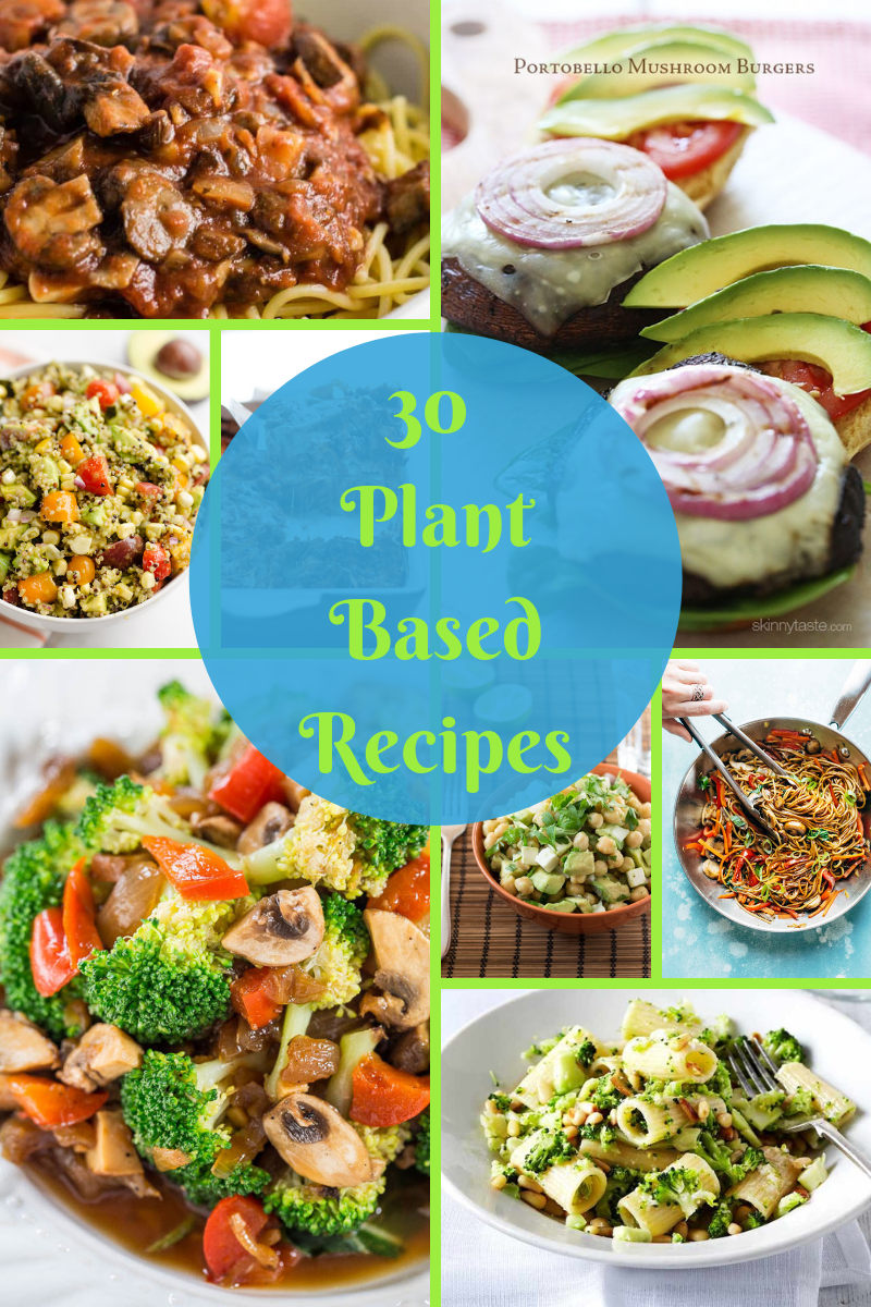30 plant based recipes that are easy to make