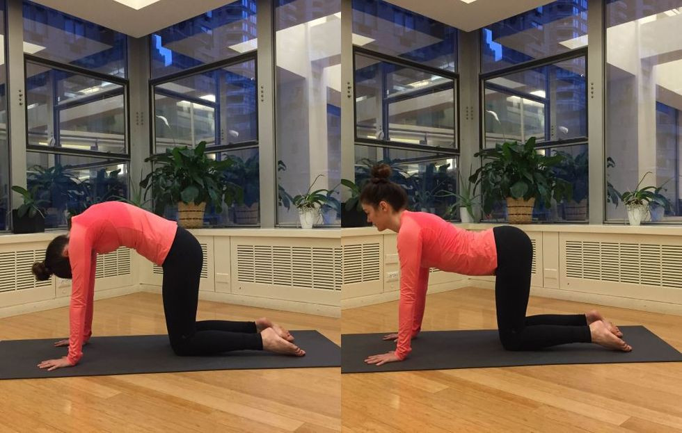 cat cow pose helps relieve bloating