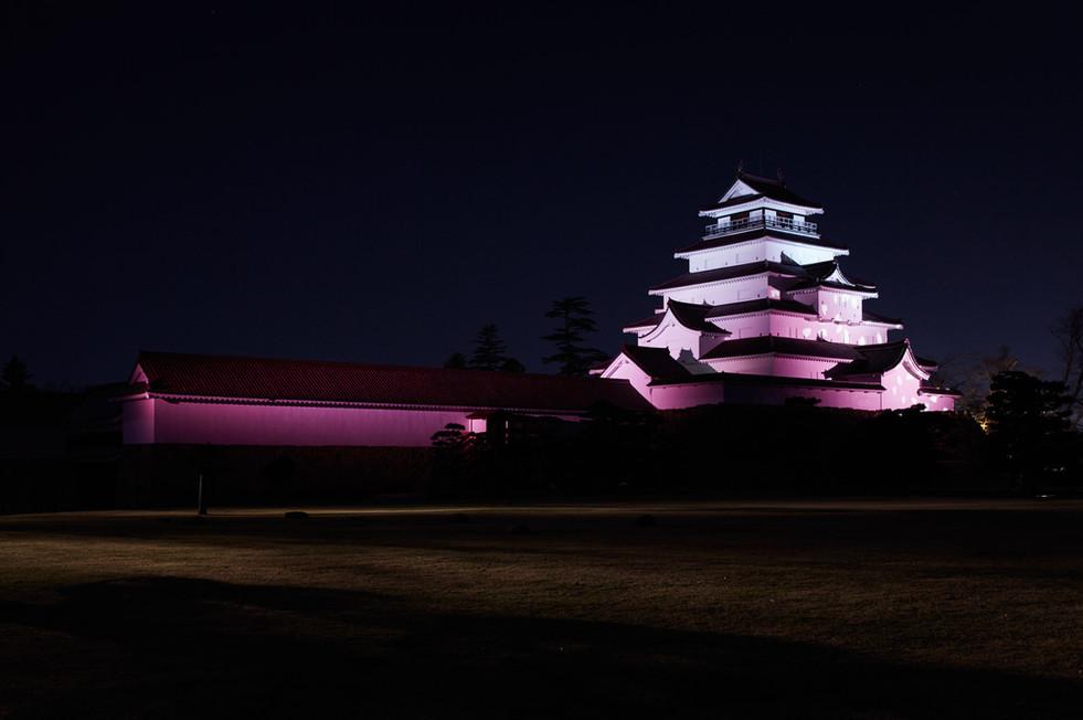 図1桜.jpg