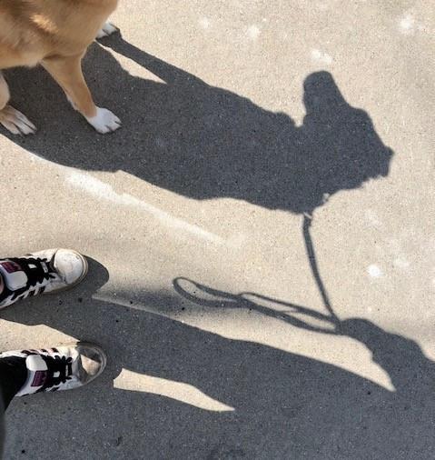 Walking Safely