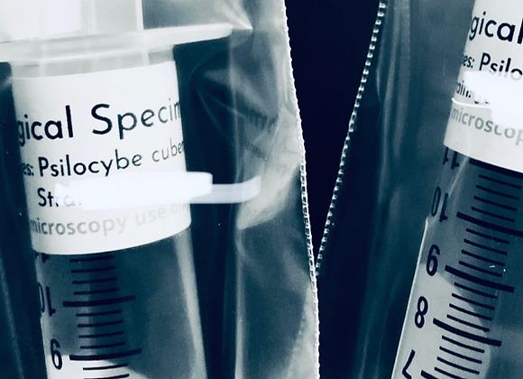 Burmese Spore Syringe