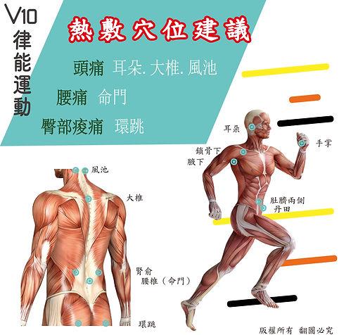 人體圖-01.jpg