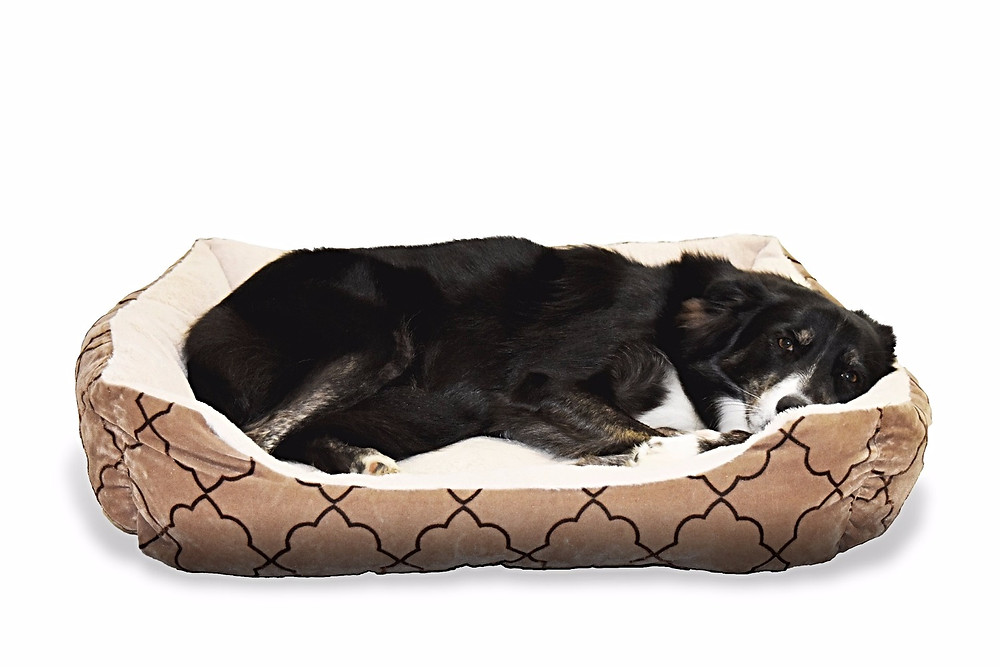 Pet Beds Material Manufacterer