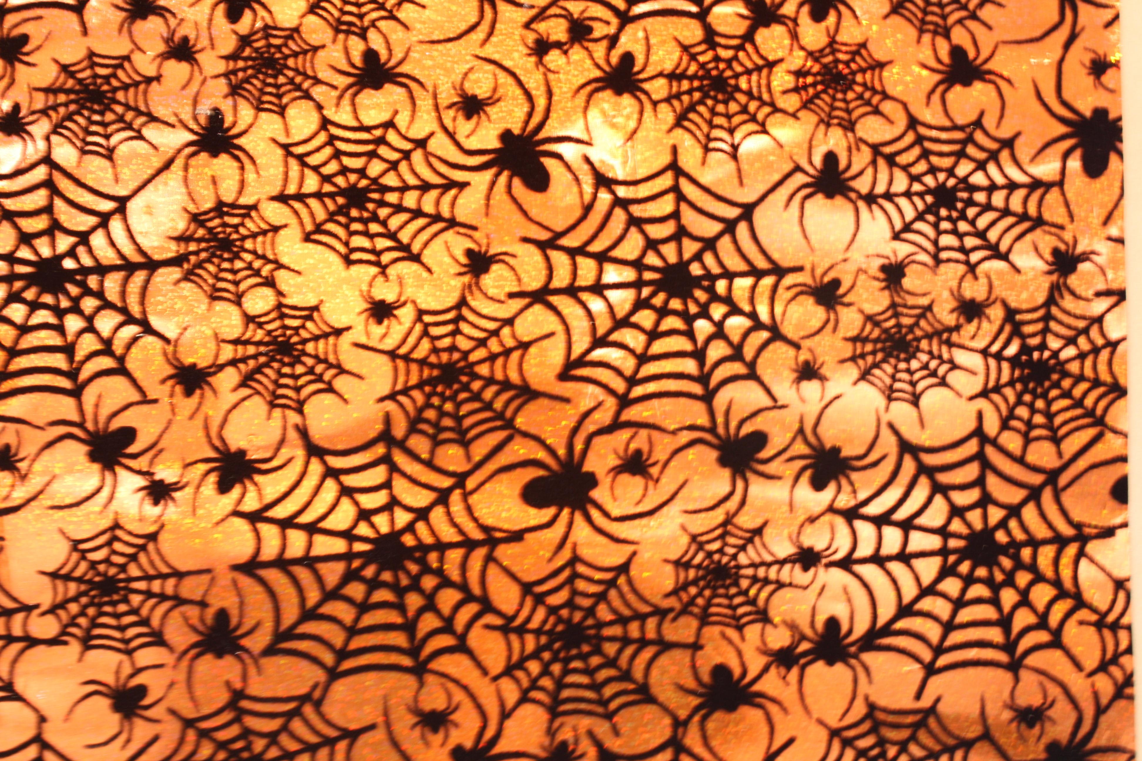 SPIDER WEB FLOCK PRINT