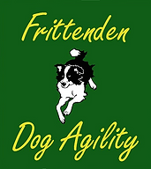 frittenden dog agility training class
