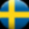 Swedish Gas Masks