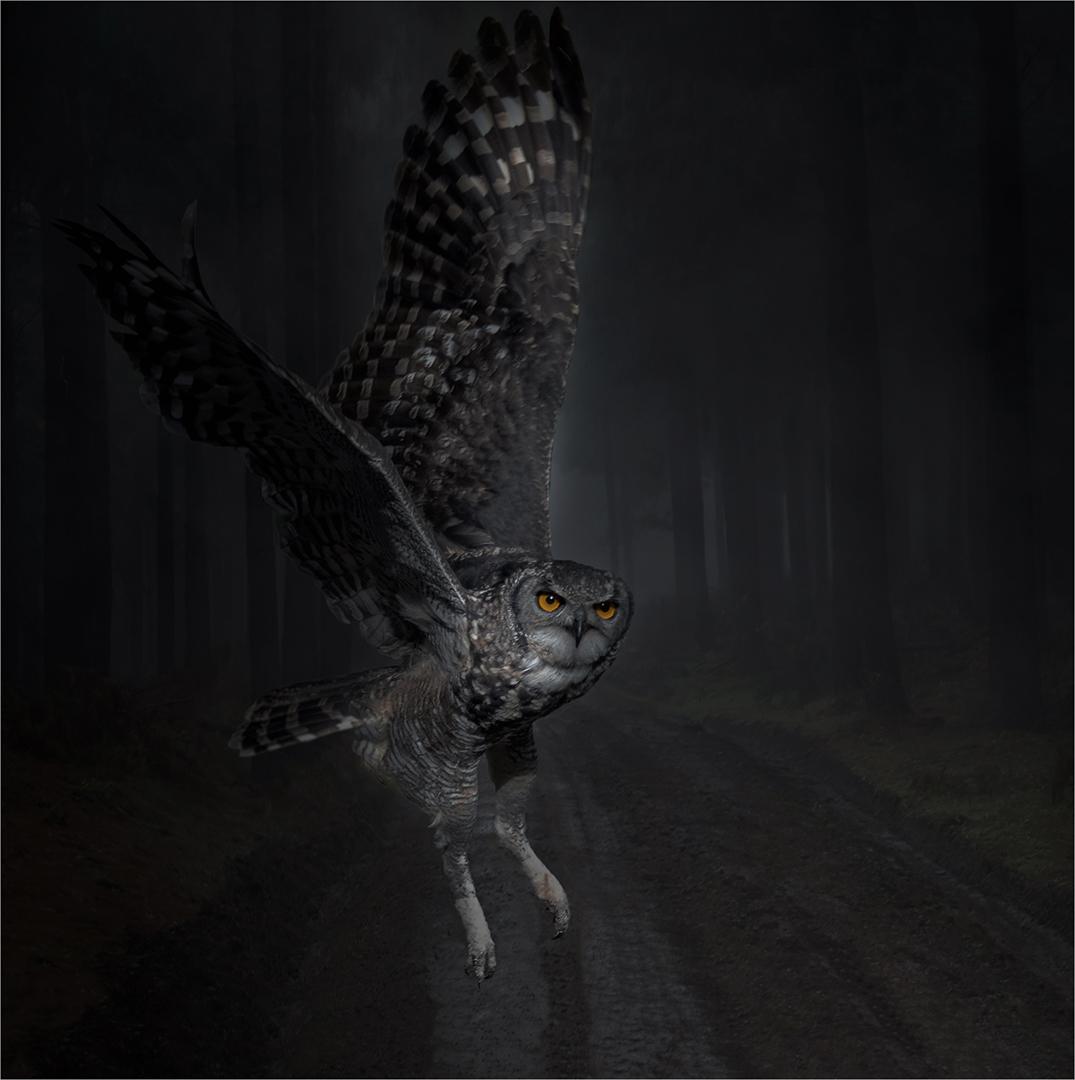 Hunter of the Night-John Mills