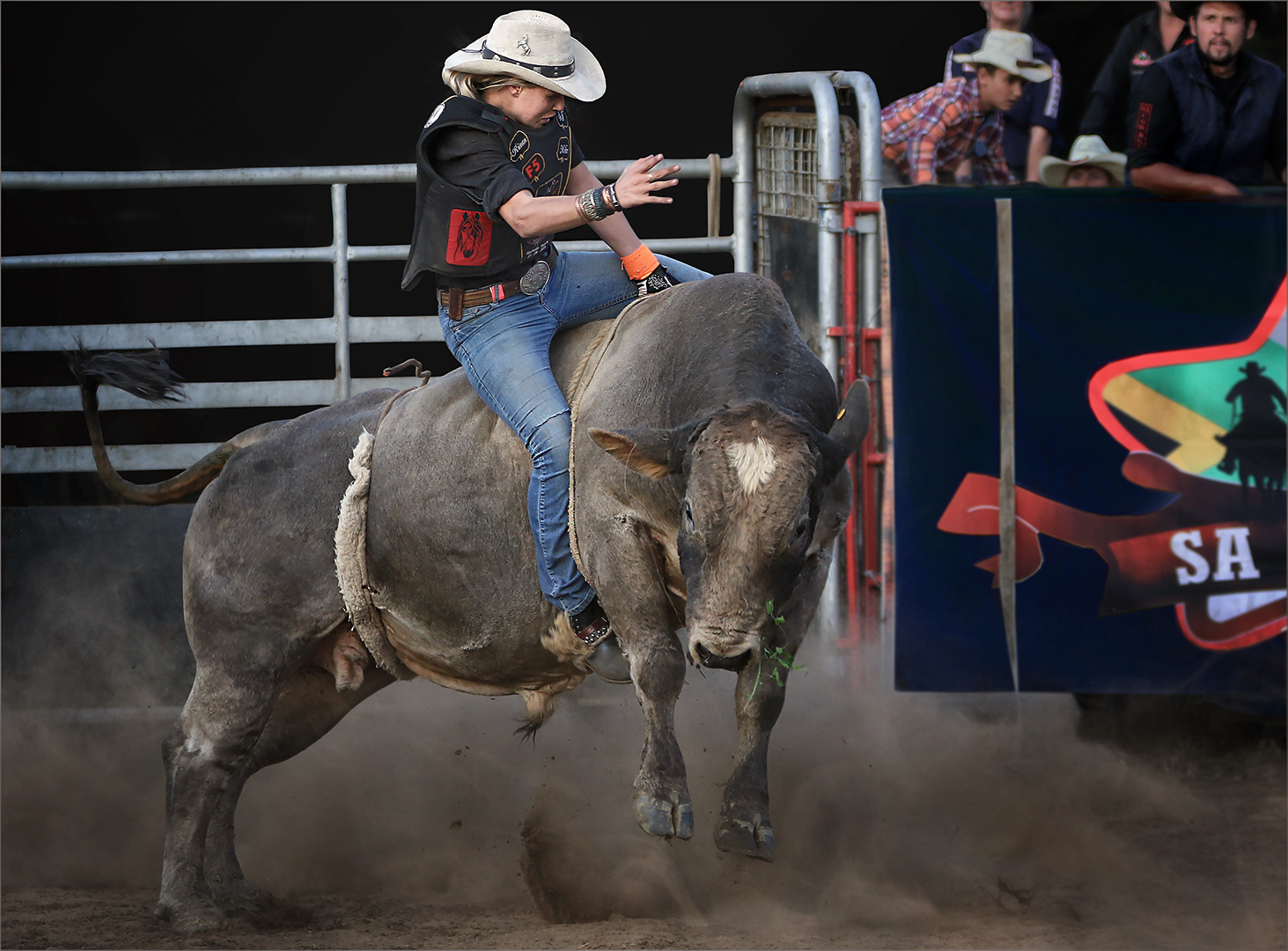 Cowgirl Bull Riding-Cliffy Els