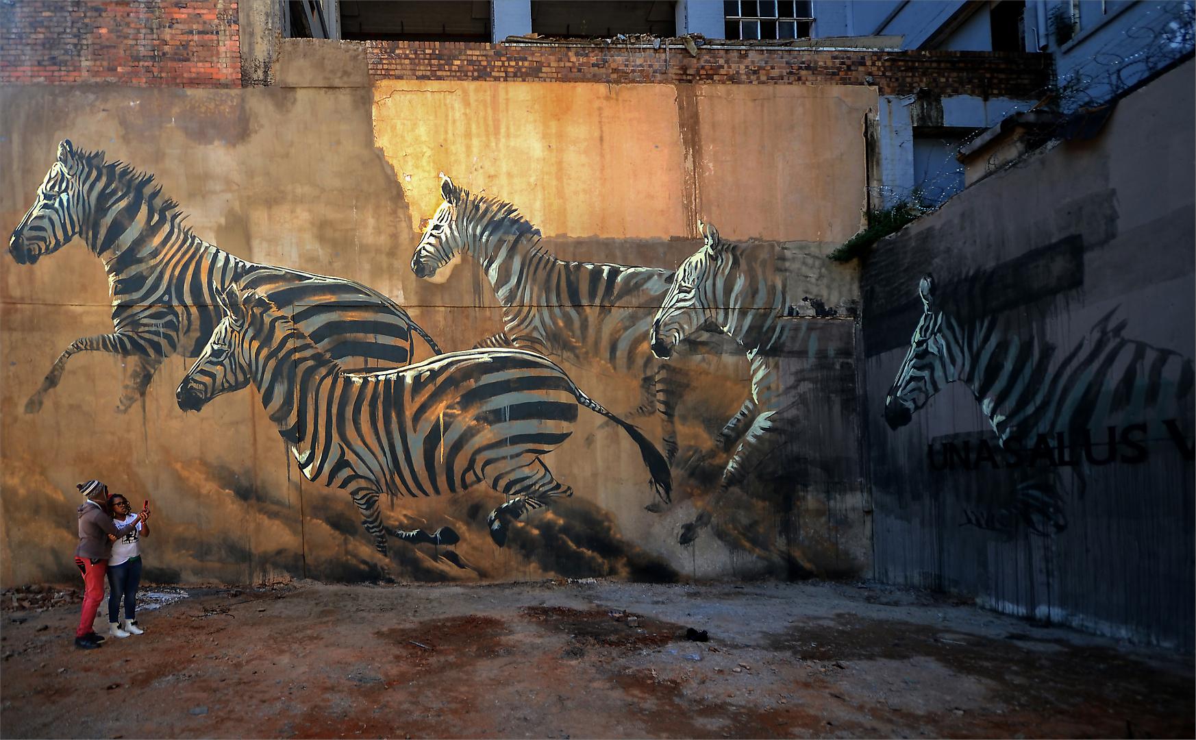 In a concrete jungle-Donald Brotherston.