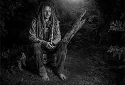 A Forrest Dweller-Dereck du Preez
