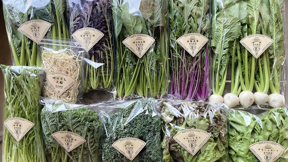 ✦春の有機野菜ボックス送料込み✦(注!!関東以外のお客様対象)