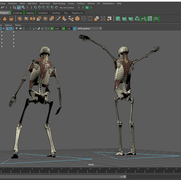 A low-poly skeleton modeled and rigged in Maya